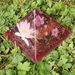 Pyamide violette